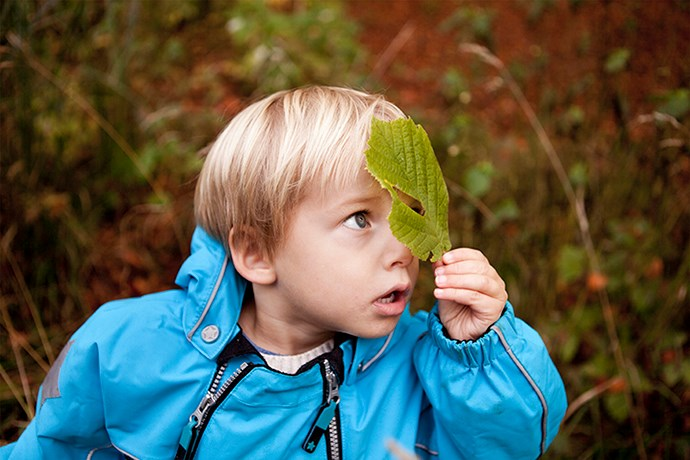 Photo of a little boy with a leaf in his hand.