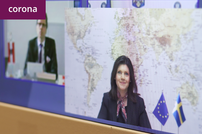 EU employment and social ministers took part in an informal video conference. Minister for Employment Eva Nordmark.